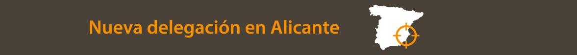Localización en España delegación Alicante